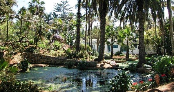 - Jardin exotique sale nice ...
